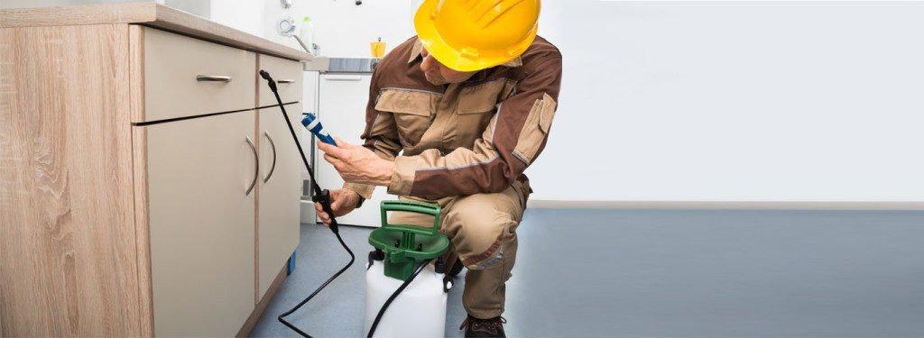 Technician - Knox Pest Control